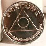 Al-Anon  Aluminum Desire Chip